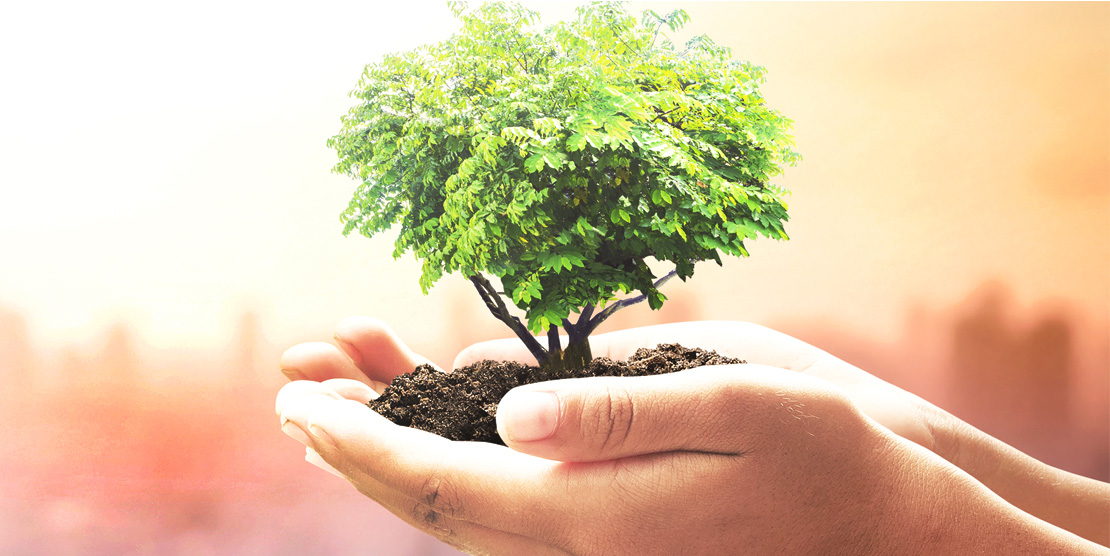 Conscientização Ambiental